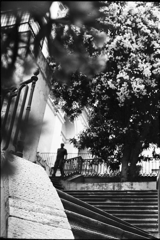 Corse_Bastia__virginie de galzain